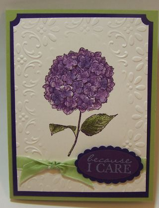 Because I Care Hydrangea Card