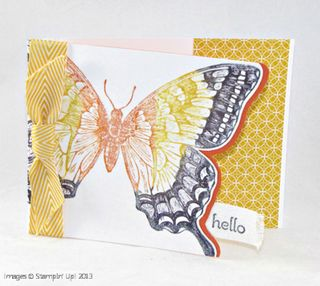 Swallowtail Project 3