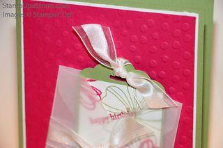 Vellum-Pocket-Birthday-Card-closeup